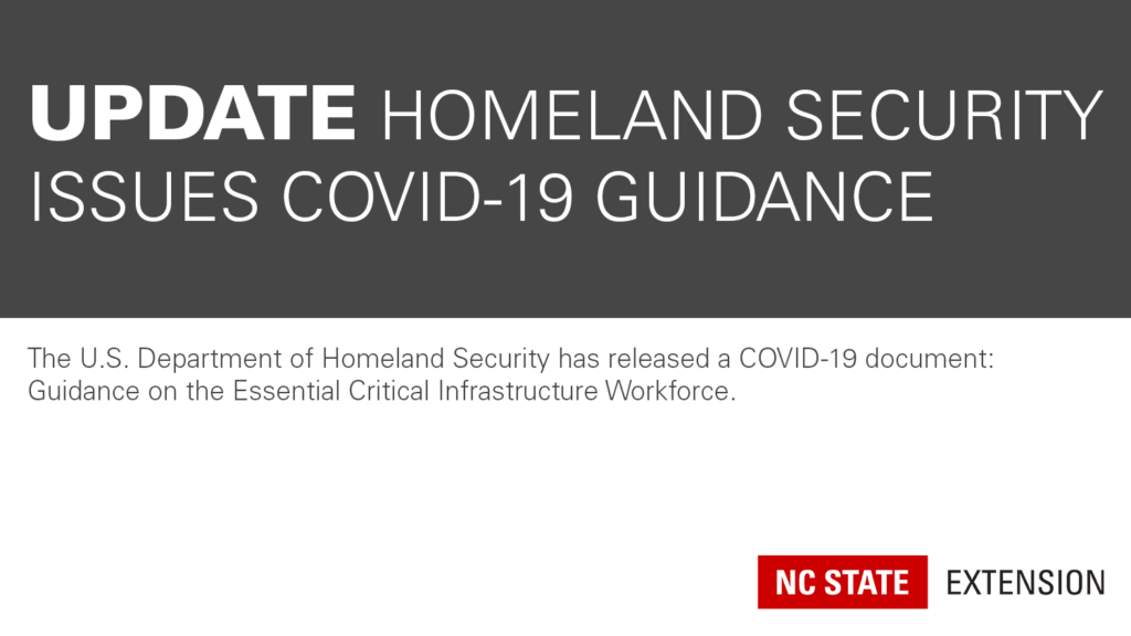 dark grey and white graphic announcing new DHS guidance document