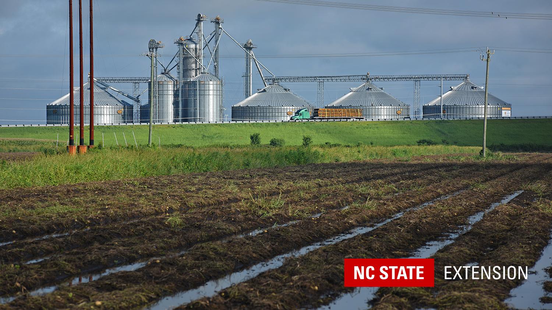 wet fields near grain silo